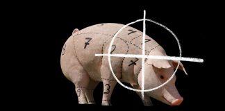 """Vorschläge für staatliches """"Tierwohl""""-Siegel oder bessere Fleisch-Kennzeichnung völlig unzureichend"""