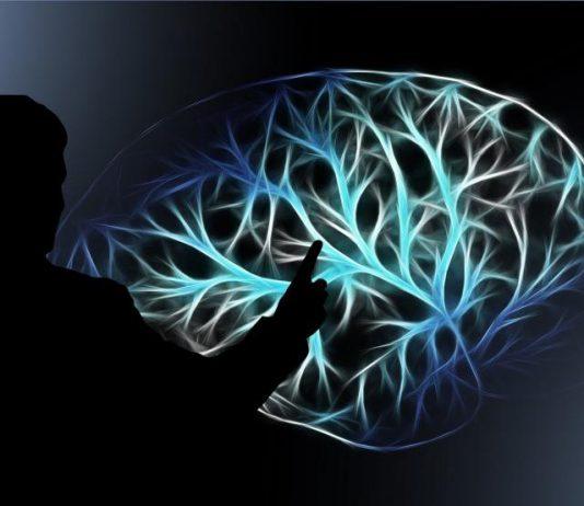 Forschung RUB Stress Gehirn