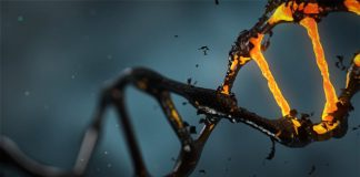Wie Moleküle durch Membranen gelangen.