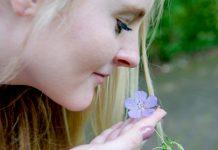 Biologie: Duftrezeptoren können viel mehr als nur riechen.