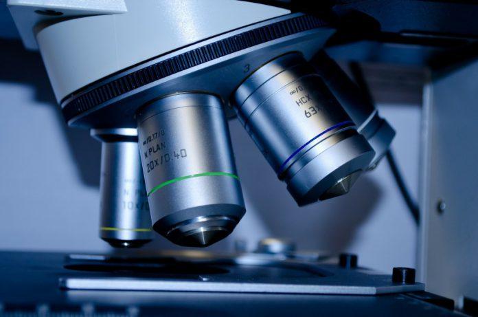 Arbeitsmedizin: Früherkennung von Mesotheliom erstmals möglich