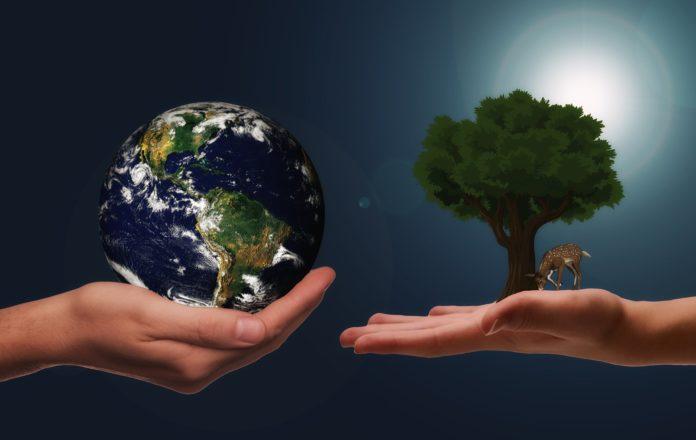 Welches sind die Top-Suchwörter zu Recycling-Themen?