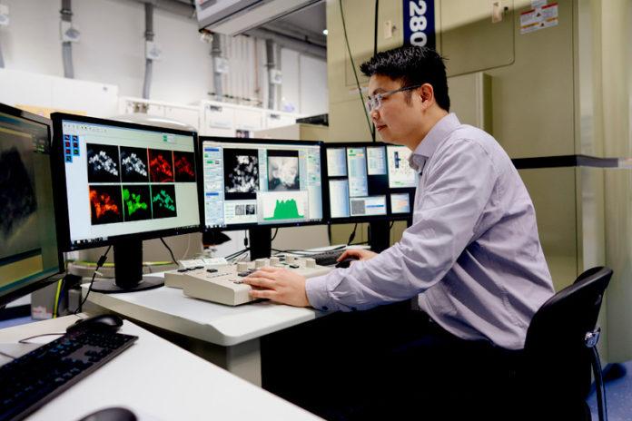 Katalysatoren einfach aufbringen: Neue Forschungsergebnisse der RUB